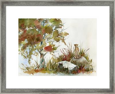 Quiet Watch Framed Print by Amy Kirkpatrick