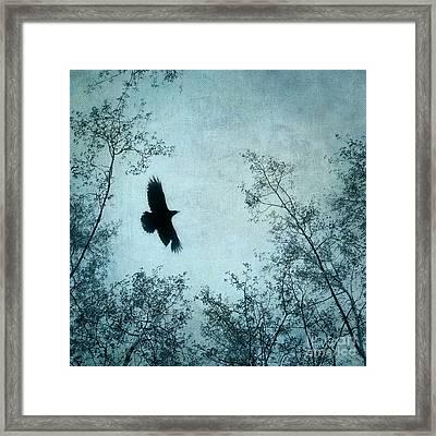 Spread Your Wings Framed Print by Priska Wettstein