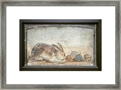 Rabbit And Figs, Roman Fresco Framed Print by Sheila Terry