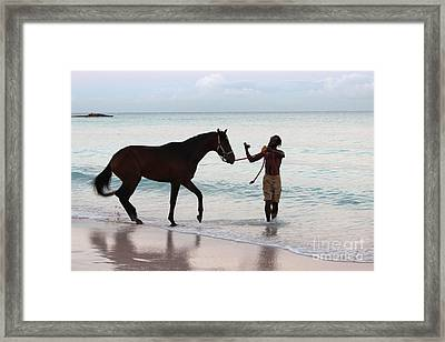 Race Horse And Groom 2 Framed Print by Barbara Marcus