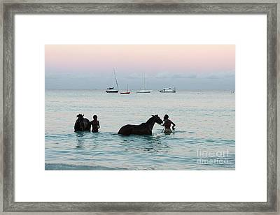 Race Horses And Grooms Framed Print by Barbara Marcus