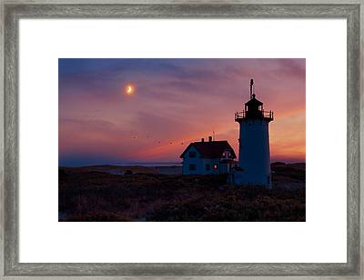 Race Point Lighthouse Standing Guard Framed Print by Bill Wakeley
