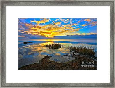 Radical Sunset Over Pamlico Sound Outer Banks Framed Print by Dan Carmichael