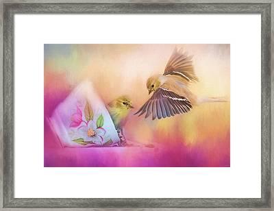 Raiding The Teacup - Songbird Art Framed Print by Jai Johnson