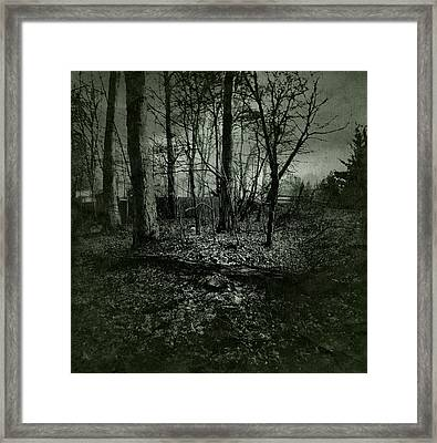 Rain In The Trees Framed Print by Susan Maxwell Schmidt