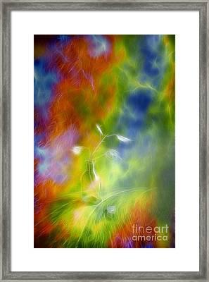 Rainbow Bridge Framed Print by Veikko Suikkanen