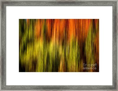 Rainbow Delight Framed Print by Az Jackson