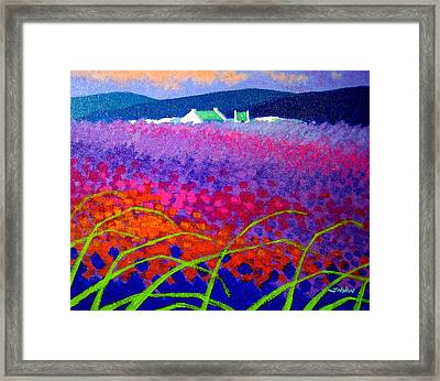 Rainbow Meadow Framed Print by John  Nolan