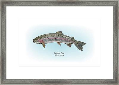 Rainbow Trout Framed Print by Ralph Martens