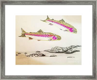 Rainbow Trout Scene - Original Gel Pen Framed Print by Scott D Van Osdol