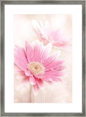 Raining Petals Framed Print by Sharon Mau