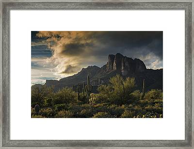 Rainy Day In The Superstitions  Framed Print by Saija Lehtonen