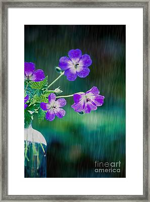 Rainy Days And Mondays Framed Print by Jan Bickerton