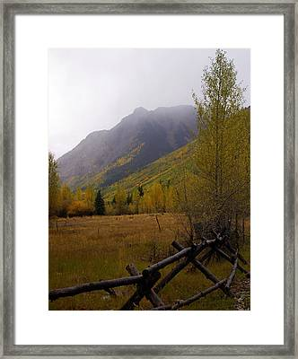 Rainy Fall Framed Print by Marty Koch