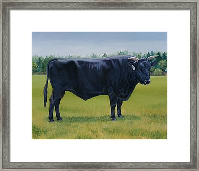 Ralphs Bull Framed Print by Stacey Neumiller