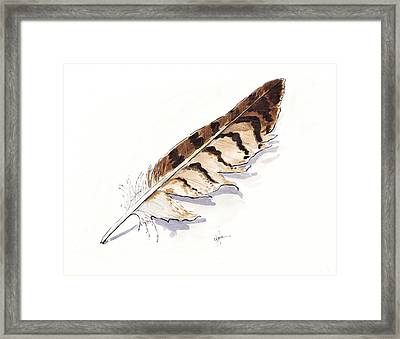 Raptor Feather Framed Print by Christine Camp