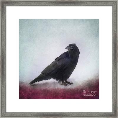 Raven Framed Print by Priska Wettstein