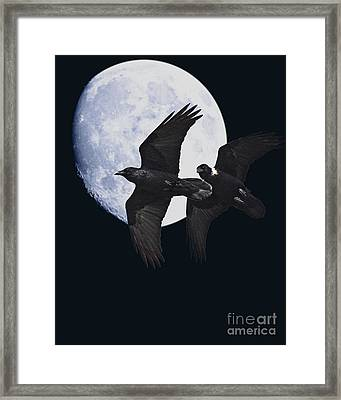 Ravens Of The Night Framed Print by Wingsdomain Art and Photography