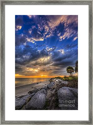 Raw Beauty Framed Print by Marvin Spates