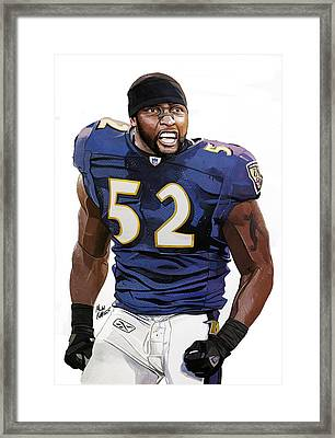 Ray Lewis Baltimore Ravens Framed Print by Michael  Pattison