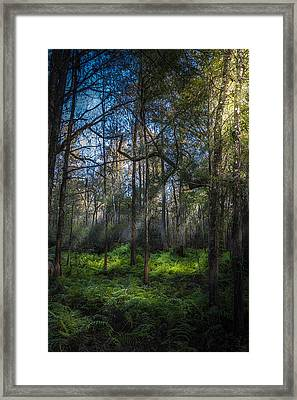 Rays Framed Print by Marvin Spates