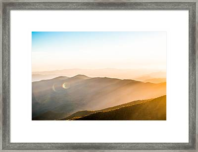 Rays Of Life Framed Print by Shelby Young