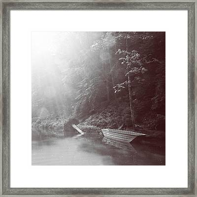 Rays Of Light Framed Print by Dominika Aniola