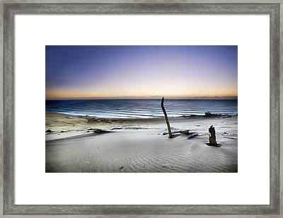 Reach For The Sun Framed Print by Mel Brackstone