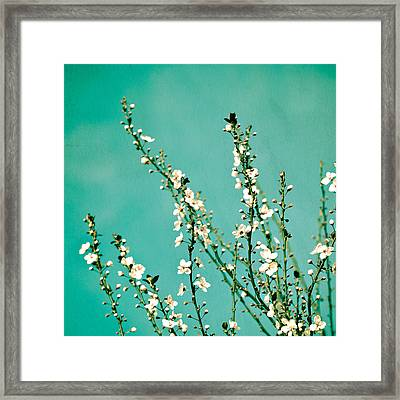 Reach Framed Print by Melanie Alexandra Price