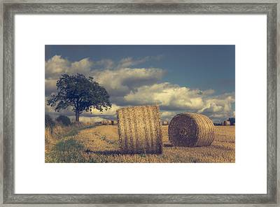 Reaching The End Of Summer Framed Print by Chris Fletcher