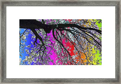 Reaching The Rainbow Framed Print by Christine Paris