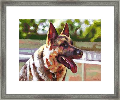 Ready To Romp Framed Print by Douglas Simonson
