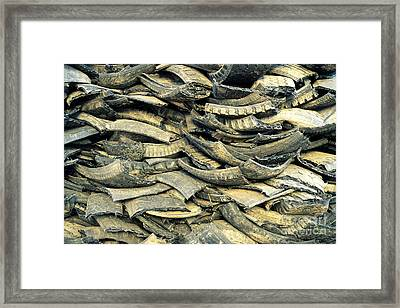 Recycling Old Tires Framed Print by Inga Spence