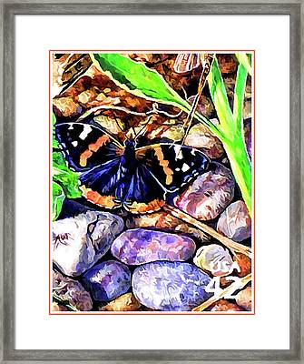 Red Admiral Butterfly Framed Print by Lanjee Chee