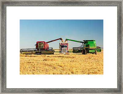Red And Green Framed Print by Todd Klassy