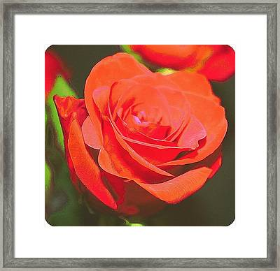 Red And Orange Framed Print by Cathie Tyler