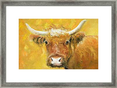 Red Angus Cow Framed Print by Jan Matson