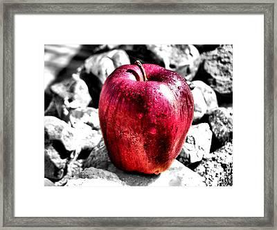 Red Apple Framed Print by Karen M Scovill