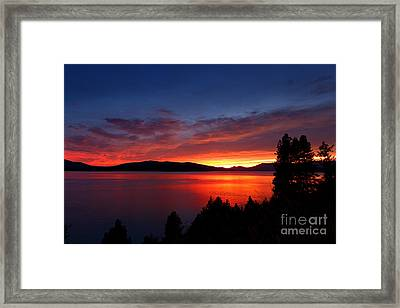 Red At Night Framed Print by Beve Brown-Clark Photography