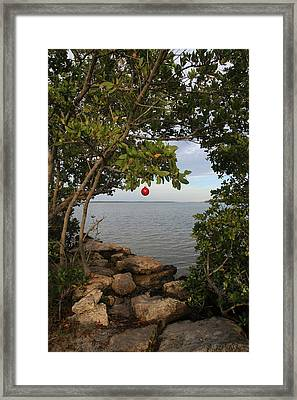 Red Ball Series Number Two Framed Print by Lynn Berreitter
