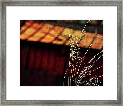 Red Barn At Sunset Framed Print by Rebecca Sherman