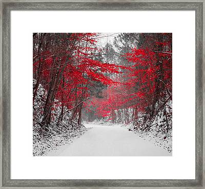 Red Blossoms Horizontal Framed Print by Parker Cunningham