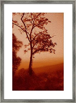Red Dawn Framed Print by Linda Sannuti