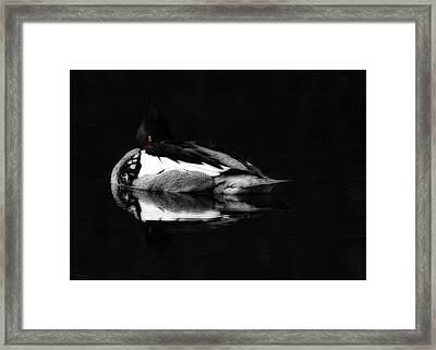 Red Eye Framed Print by Lori Deiter