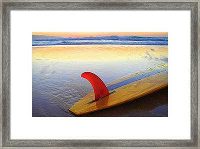 Red Fin Sunset Framed Print by Sean Davey