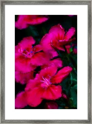 Red Floral Study Framed Print by David Lane