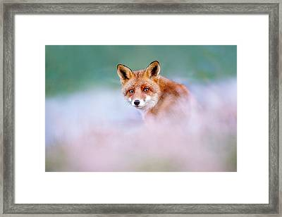 Red Fox In A Mysterious World Framed Print by Roeselien Raimond