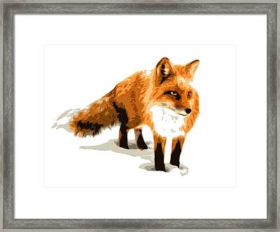 Red Fox In Winter Framed Print by DB Artist