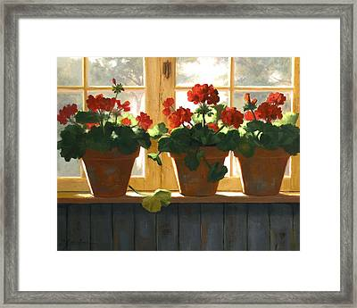 Red Geraniums Basking Framed Print by Linda Jacobus
