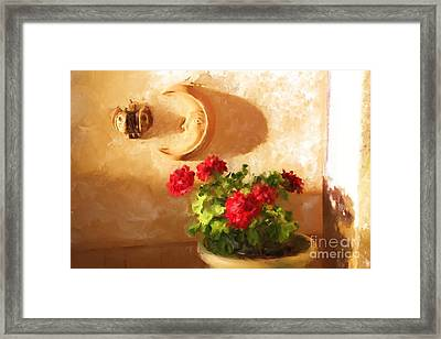 Red Geraniums Framed Print by Robin  Waters